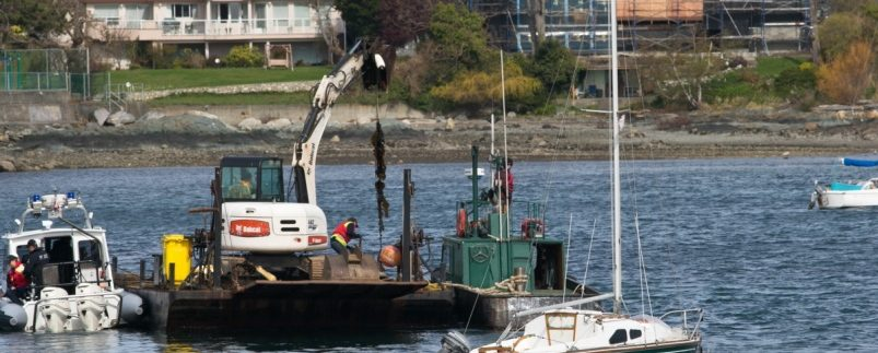 RCMP scooping up illegal mooring buoys in Oak Bay, Victoria. Photo courtesy the Times Colonist